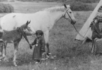 34_Approx1877NezPerceChildwithFoal_012548150_553050f9db494_146_100.png